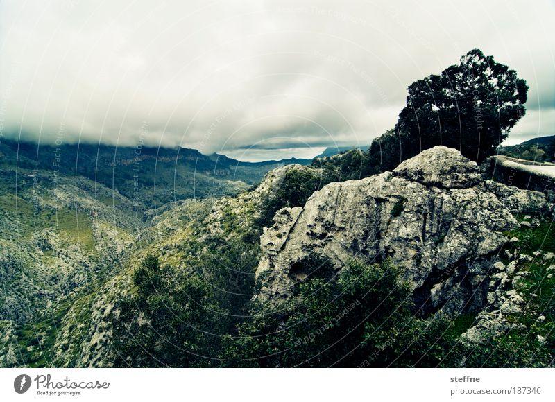 mallorquinisches Hinterland Baum grün blau Pflanze Wolken Berge u. Gebirge Landschaft Wind Wetter Felsen natürlich Gewitter Mallorca Tal schlechtes Wetter