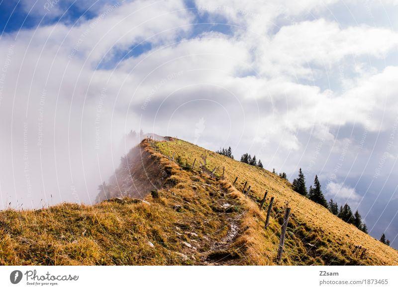 Gratwanderung Berge u. Gebirge wandern Umwelt Natur Landschaft Wolken Sonne Herbst Nebel Alpen Gipfel Schlucht bedrohlich gigantisch hoch Einsamkeit Abenteuer