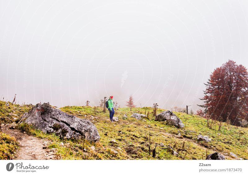 ganz allein hier oben Berge u. Gebirge wandern Sport Frau Erwachsene 30-45 Jahre Natur Landschaft Herbst schlechtes Wetter Nebel Sträucher Alpen Gipfel gehen