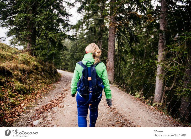 Abwärts mit Schwung Lifestyle Freizeit & Hobby Berge u. Gebirge wandern Sport Junge Frau Jugendliche 18-30 Jahre Erwachsene Natur Landschaft Herbst
