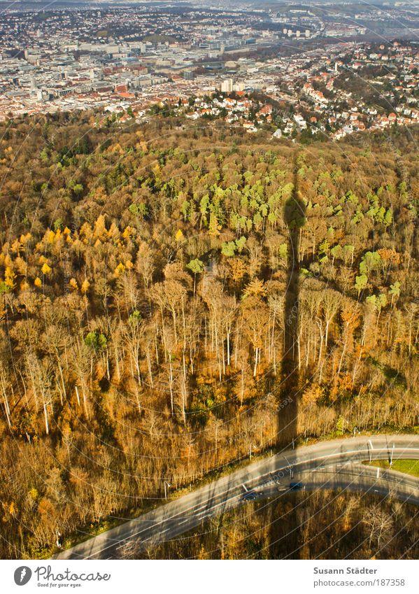 kein Berliner! Ferien & Urlaub & Reisen Tourismus Sightseeing Städtereise Stuttgart Stadt Turm Denkmal Wald Waldrand Herbst Herbstwald Herbstfärbung Stadtrand