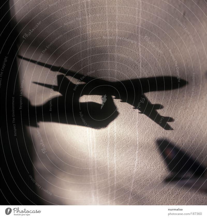 Langstreckenflug Himmel Hand Sommer Ferien & Urlaub & Reisen Ferne Freiheit Umwelt Luft Angst Flugzeug fliegen Finger frei Tourismus Schatten Klima
