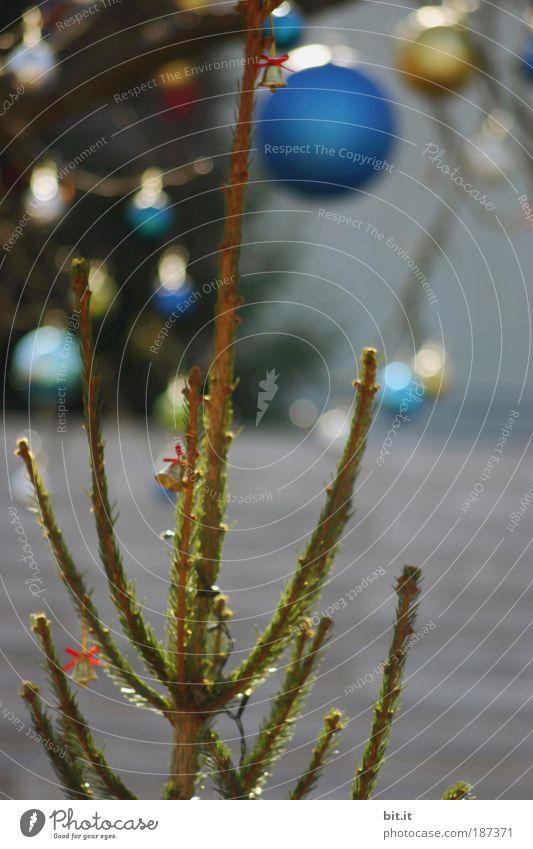 KLING GLÖCKCHEN Weihnachten & Advent blau Glück Stimmung Lampe Feste & Feiern Beleuchtung glänzend Gold Lifestyle Dekoration & Verzierung Warmherzigkeit Weihnachtsbaum Kugel Schmuck