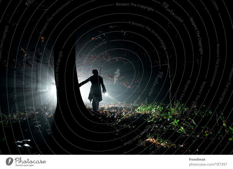 tatort Mensch Natur Pflanze Wald dunkel kalt Regen Stimmung wandern Nebel Sicherheit Lampe Nacht Filmindustrie bedrohlich Ganzkörperaufnahme
