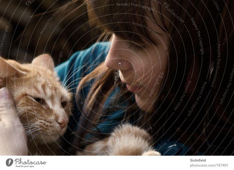 Herbstkatzen Katze Mensch Frau Jugendliche Junge Frau Tier 18-30 Jahre Gesicht Erwachsene Leben feminin Haare & Frisuren Glück Freundschaft Freizeit & Hobby