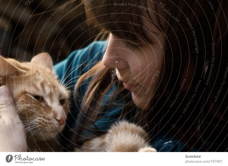 Herbstkatzen Katze Mensch Frau Jugendliche Junge Frau Tier 18-30 Jahre Gesicht Erwachsene Leben feminin Herbst Haare & Frisuren Glück Freundschaft Freizeit & Hobby