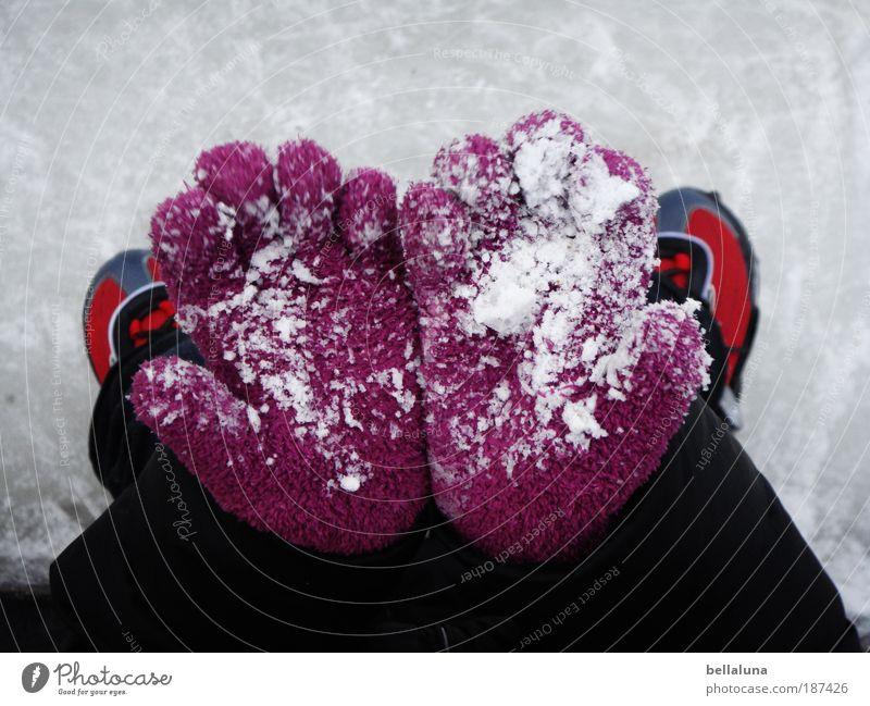 Guck mal! Schnee! Mensch Kind Hand Mädchen Freude Bewegung Glück Beine Fuß Eis Kindheit Zufriedenheit Arme Finger Erfolg Fröhlichkeit