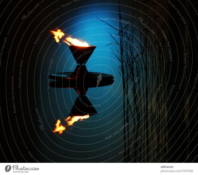 Olympisches Feuer Natur Wasser blau Pflanze Sommer schwarz kalt Herbst Luft hell Umwelt nass Coolness Sträucher Asien heiß
