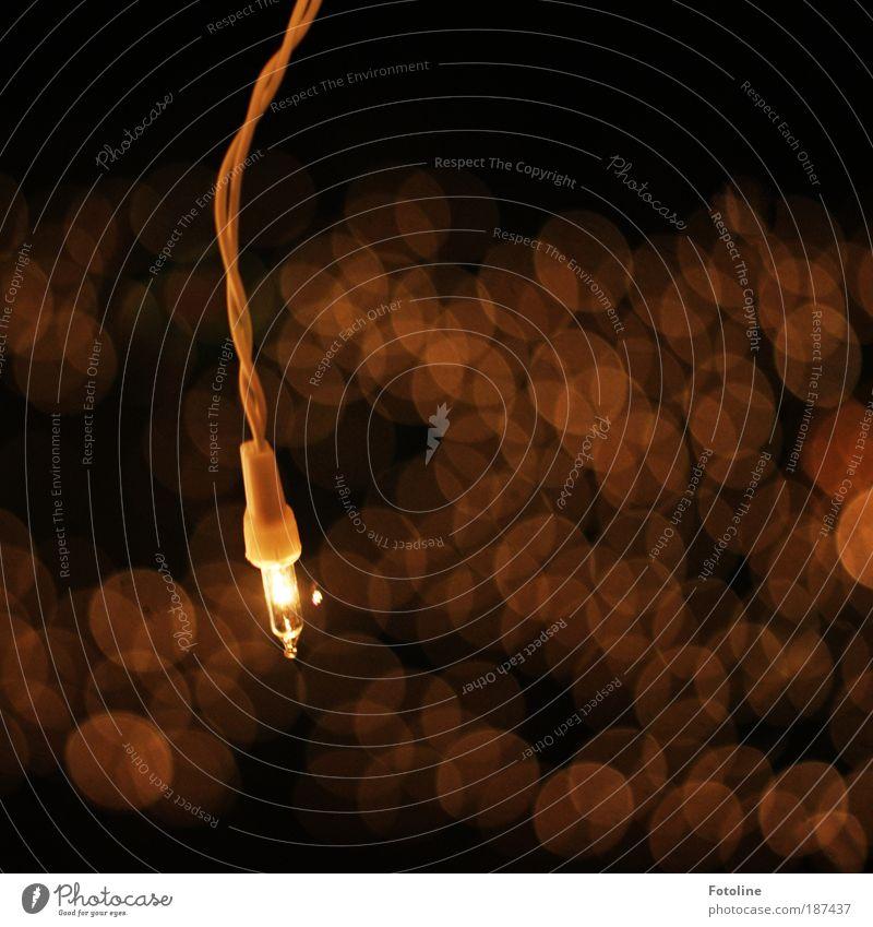 Lichtlein schwarz gelb dunkel hell Glas Elektrisches Gerät Energiewirtschaft Kabel Technik & Technologie dünn Glühbirne Glanzlicht Feste & Feiern