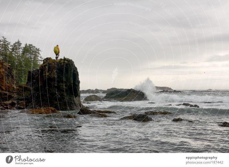 Wanderer und zerklüftete Küstenlinie Meer Wellen wandern Mensch Mann Erwachsene 1 Natur Baum Stimmung Freude Tapferkeit zusammenbrechend Pazifik Felsen robust