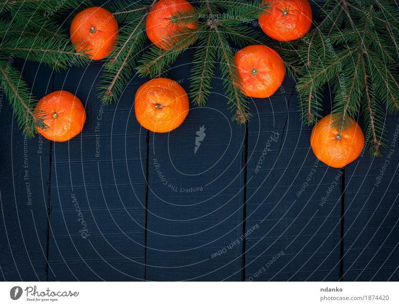 Orangenmandarinen mit Fichtenzweigen auf einem schwarzen Hintergrund Frucht Vegetarische Ernährung Dekoration & Verzierung Feste & Feiern Weihnachten & Advent