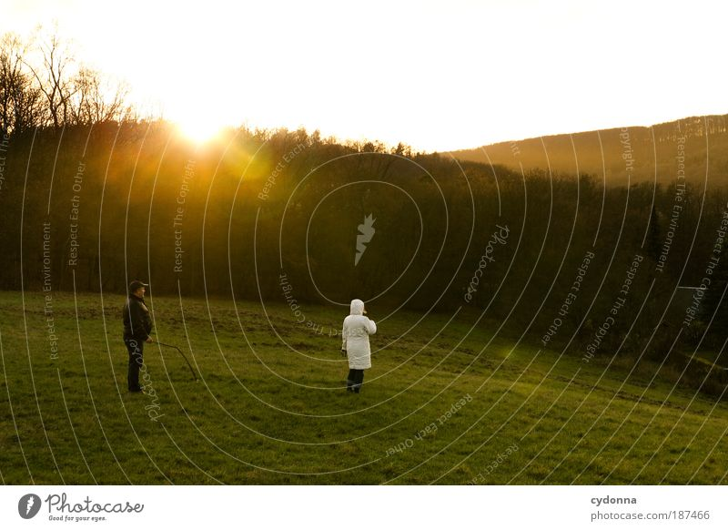 Abschied harmonisch Erholung ruhig Ausflug wandern Umwelt Natur Landschaft Sonnenaufgang Sonnenuntergang Wiese Wald Bewegung Freiheit Horizont Idylle Leben
