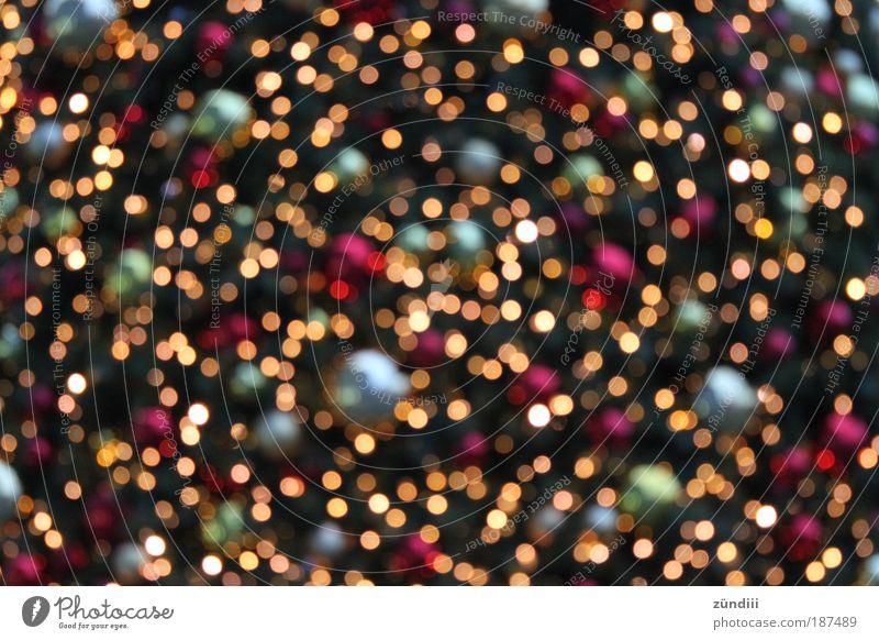 christmaslights Discokugel Gold glänzend leuchten mehrfarbig rot silber Stimmung Glück Zufriedenheit Vorfreude Glaube Licht Weihnachten & Advent glitzern