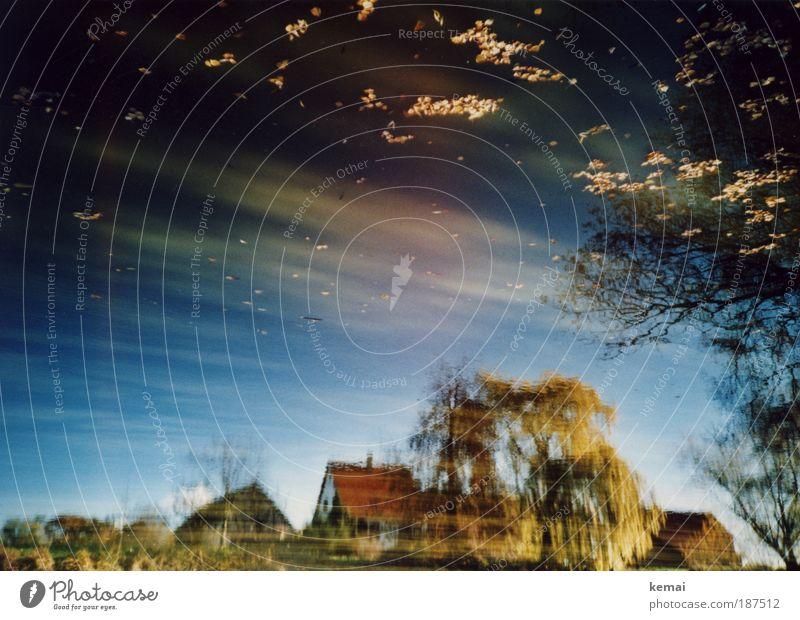 Das Haus im See Natur Landschaft Wasser Himmel Sommer Schönes Wetter Pflanze Baum Seeufer Teich nass natürlich schön Reflexion & Spiegelung Bauernhof Bauernhaus