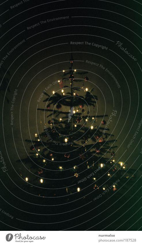 black is beauty Weihnachten & Advent Baum Winter ruhig Religion & Glaube Stimmung Kindheit Feste & Feiern Zusammensein glänzend Wohnung Häusliches Leben