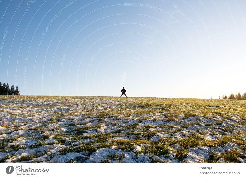 Autoritär Mensch Himmel Baum Winter Einsamkeit Ferne Landschaft Feld Erde Ausflug frisch Tourismus stehen Respekt Ärger Stolz