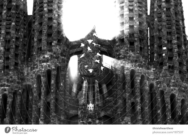 Frohest Fest! alt dunkel Gefühle Architektur Religion & Glaube Gebäude Stein Kraft Kirche leuchten Bauwerk Blühend Glaube Burg oder Schloss Denkmal