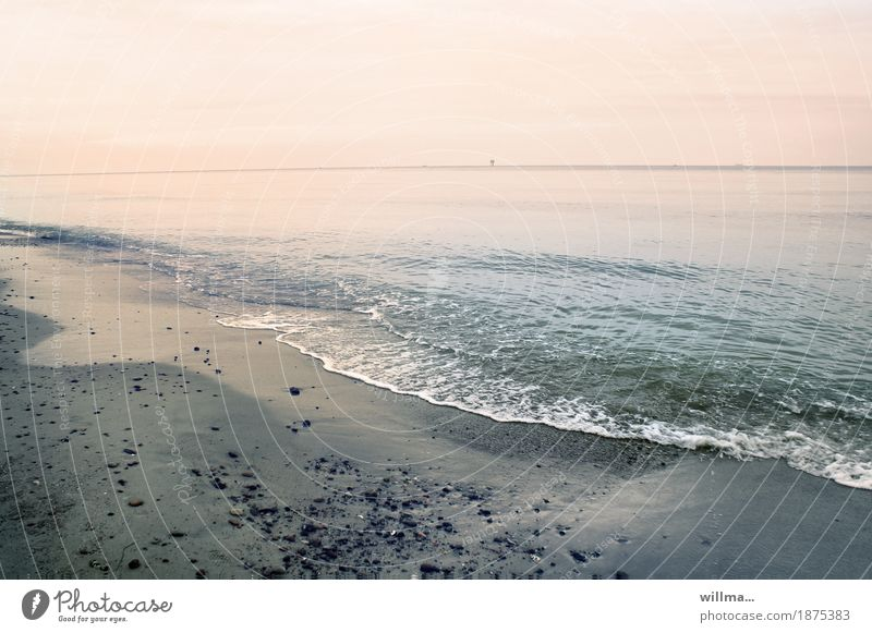 würde Natur Ferien & Urlaub & Reisen Wasser Meer Landschaft Strand Küste Urelemente Ostsee harmonisch sanft Sandstrand Pastellton Erholungsgebiet