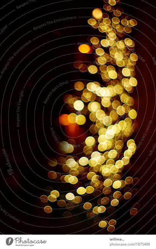 Lichterbaum Weihnachtsbaum Weihnachtsbeleuchtung Weihnachten & Advent festlich Beleuchtung gelb gold Reichtum Lichtkullern Unschärfe Blendenfleck Goldrausch