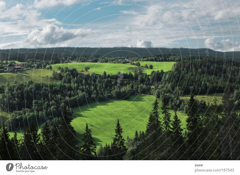 Weites Land Natur Himmel grün Sommer Ferien & Urlaub & Reisen Ferne Wald Leben Wiese Berge u. Gebirge Landschaft Umwelt Ausflug Tourismus Aussicht beobachten