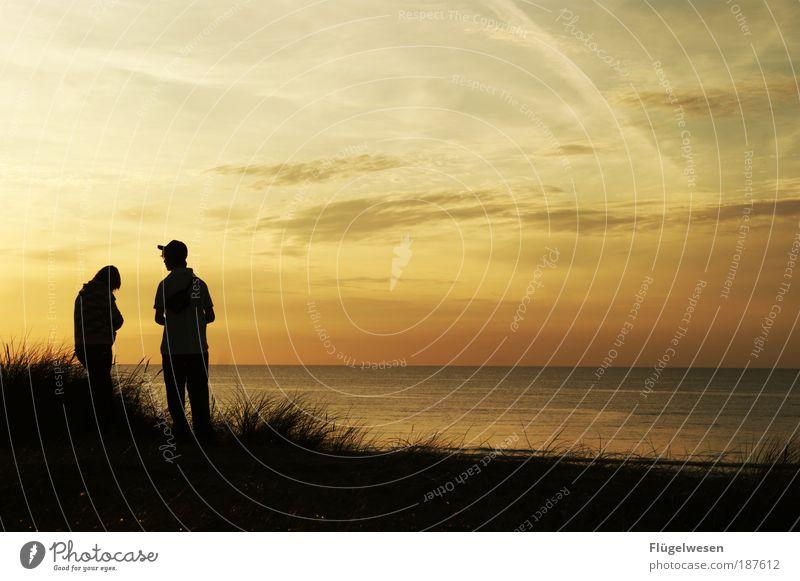 Wollen wir es nicht noch einmal zusammen versuchen? Mensch Jugendliche Ferien & Urlaub & Reisen schön Meer sprechen Gras See Paar Tourismus Sträucher