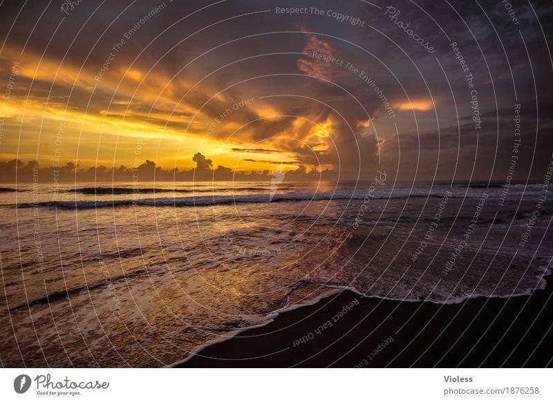mehr meer geht nicht Himmel Ferien & Urlaub & Reisen Sommer schön Landschaft Meer Erholung Wolken ruhig Ferne Strand Küste Tourismus orange Horizont
