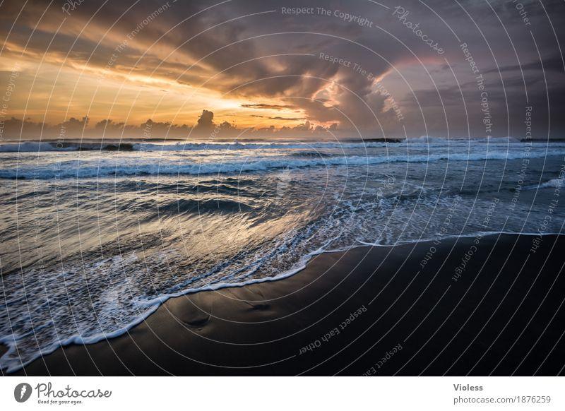 End of Day Abenteuer Ferne Freiheit Expedition Sommer Sonne Strand Meer Wellen Umwelt Natur Sand Wasser Himmel Wolken Sonnenlicht Küste entdecken Erholung