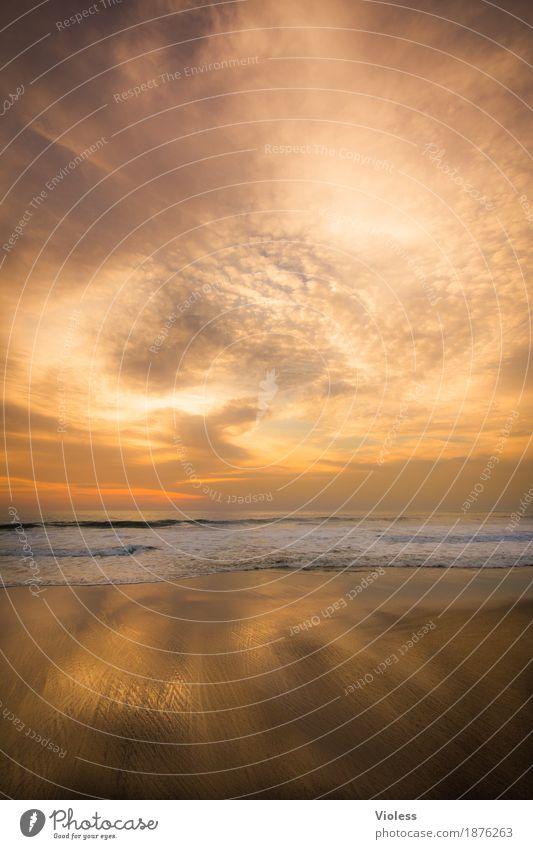 goldrush Natur Urelemente Erde Sand Luft Wasser Himmel Wolken Sonne Sonnenaufgang Sonnenuntergang Sonnenlicht Sommer Schönes Wetter Wellen Küste Strand Meer