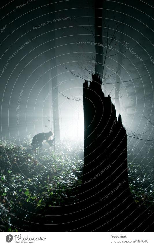 nachtgestalten Mensch Wald dunkel kalt träumen Zufriedenheit Angst Kunst Nebel Umwelt ästhetisch Abenteuer bedrohlich Wandel & Veränderung Vergänglichkeit gruselig