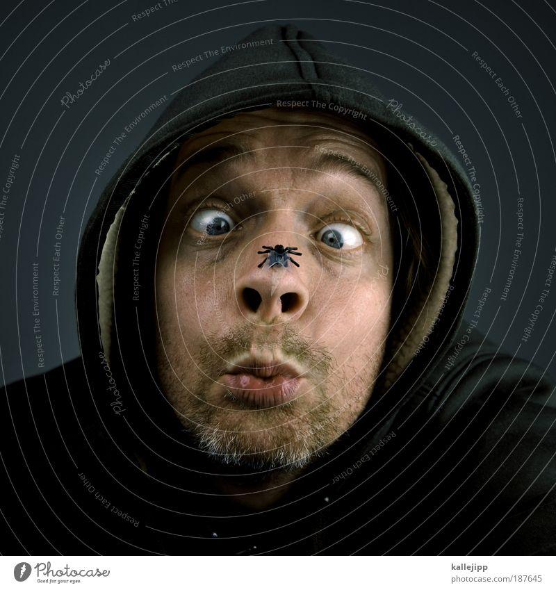 biologiestudium Jagd Mensch maskulin Mann Erwachsene Kopf Gesicht Auge Nase Mund 1 30-45 Jahre Pullover grauhaarig Dreitagebart Behaarung Tier Fliege Blick Ekel