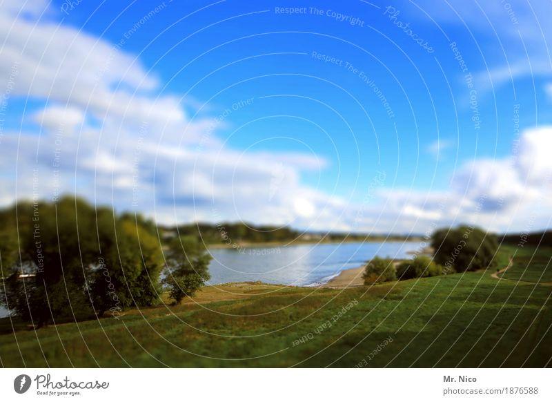 Rhein land Umwelt Natur Landschaft Wolken Klima Schönes Wetter Baum Wiese Flussufer Strand Binnenschifffahrt Idylle Nordrhein-Westfalen Wasser Erholungsgebiet