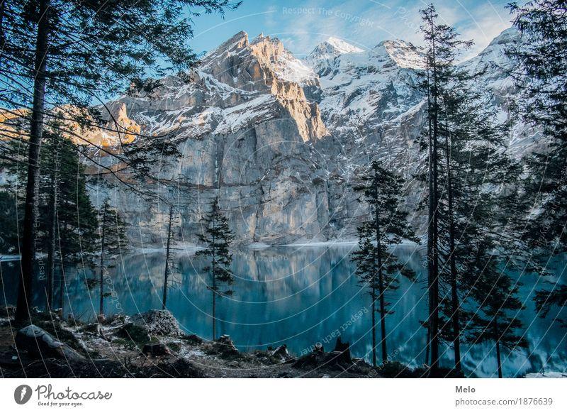 Oeschinensee Tourismus Ausflug Freiheit Expedition Winter Schnee Winterurlaub Berge u. Gebirge wandern Klettern Bergsteigen Natur Landschaft Erde Luft Wasser