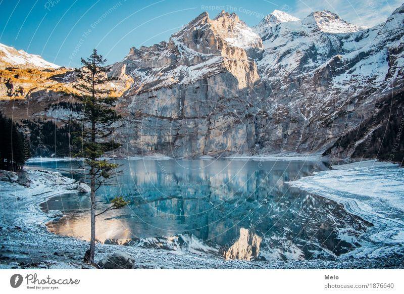 Oeschinensee II Natur Landschaft Urelemente Wasser Herbst Winter Eis Frost Schnee Hügel Felsen Alpen Berge u. Gebirge Gipfel Schneebedeckte Gipfel Gletscher