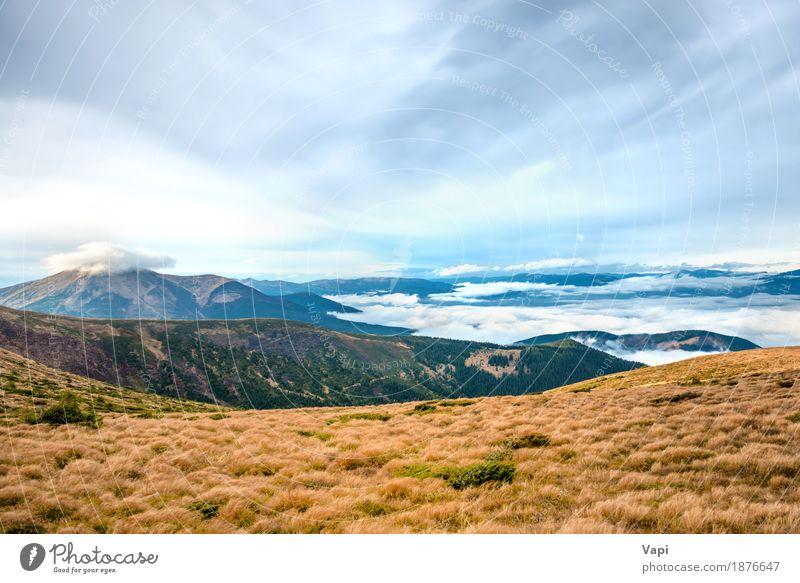 Blick vom Berg auf die wunderschöne Landschaft Himmel Natur Ferien & Urlaub & Reisen Pflanze blau Farbe Sommer grün weiß Wolken Berge u. Gebirge schwarz Umwelt