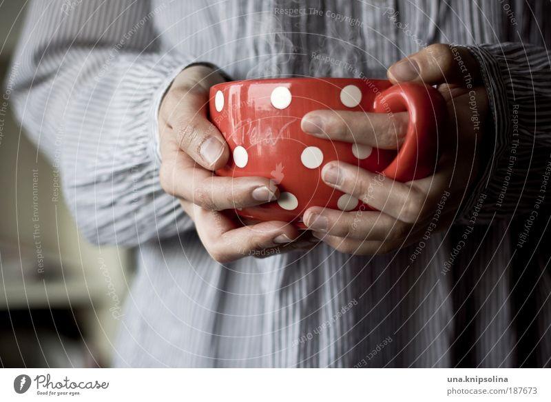 heiße schokolade Kaffeetrinken Kakao Tee Tasse Becher Gesundheit Erholung ruhig Duft Junge Frau Jugendliche Erwachsene Arme Hand Finger 1 Mensch 18-30 Jahre