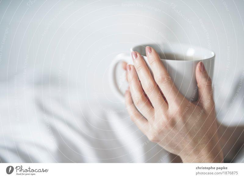 Tea Time Mensch Hand Erholung ruhig feminin hell Wohnung Häusliches Leben Zufriedenheit Finger Getränk Kaffee trinken festhalten Wohlgefühl harmonisch