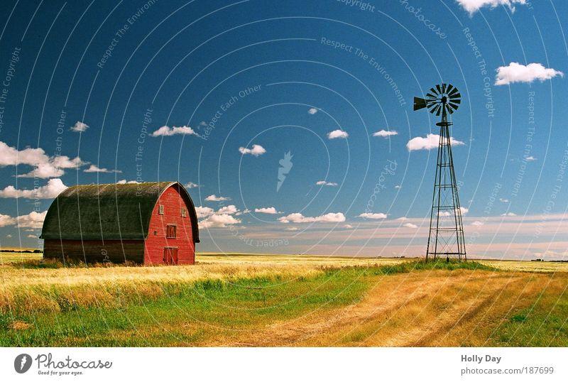 Die wahrscheinlich einzige rote Scheune (West-)Kanadas Landwirtschaft Windkraftanlage Energiewirtschaft Landschaft Himmel Wolken Sommer Schönes Wetter Gras