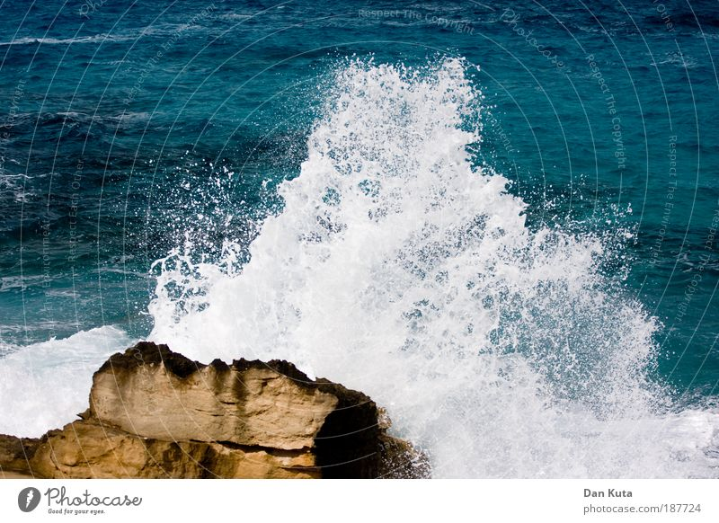 Mal so richtig austoben! weiß blau Sommer Meer Herbst Stein Küste Wetter Wellen Felsen Wut Sturm kämpfen Brandung spritzen schlagen