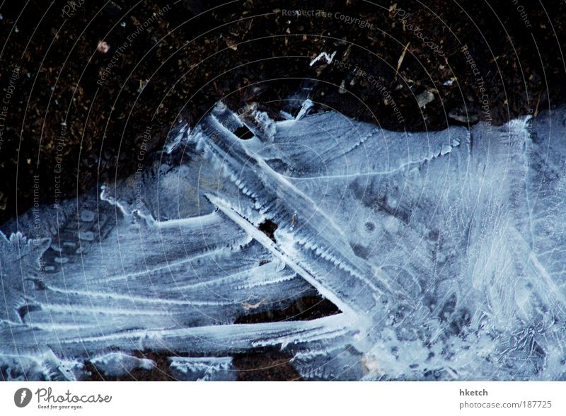 Jetzt aber zackig! Klimawandel kalt Eis gefroren Pfütze blau Farbfoto Gedeckte Farben Außenaufnahme Textfreiraum oben Morgendämmerung