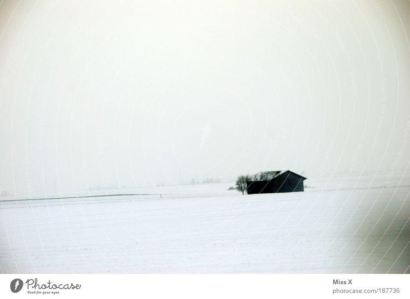Alt & Einsam Natur Winter Haus Einsamkeit dunkel Schnee Eis dreckig Wohnung wandern Ausflug Frost einfach Häusliches Leben Vergänglichkeit Dorf