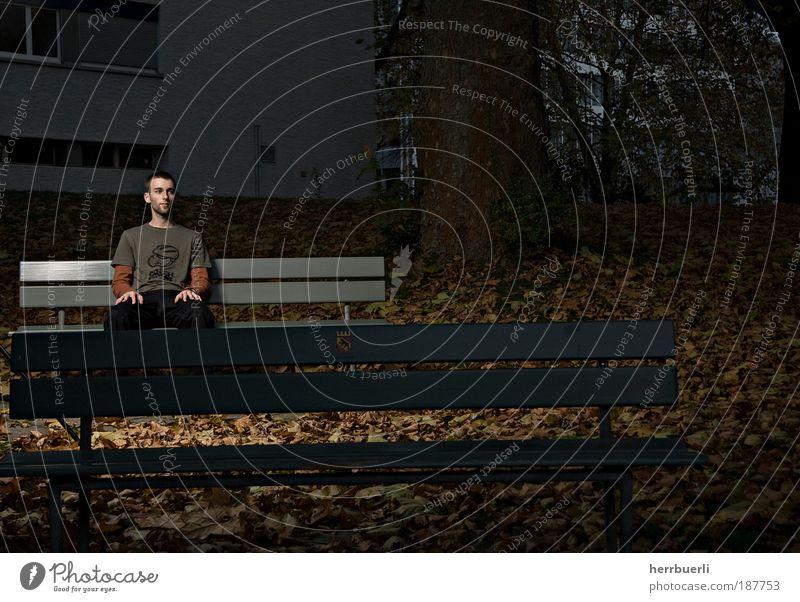 Park bei Nacht Freizeit & Hobby Mensch maskulin Junger Mann Jugendliche Erwachsene Leben 1 18-30 Jahre warten braun grün schwarz Parkbank Baum Blatt beobachten