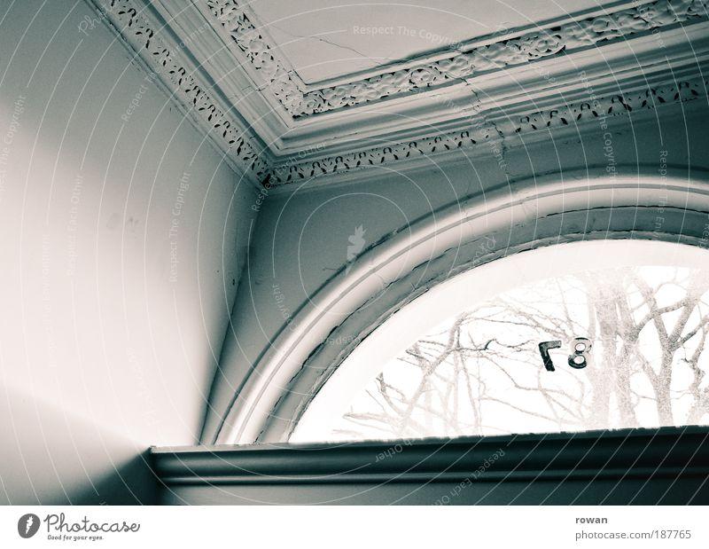 No. 87 alt Baum Haus dunkel Wand Fenster Mauer Gebäude Architektur Tür Ecke Dekoration & Verzierung Bauwerk Eingang schäbig