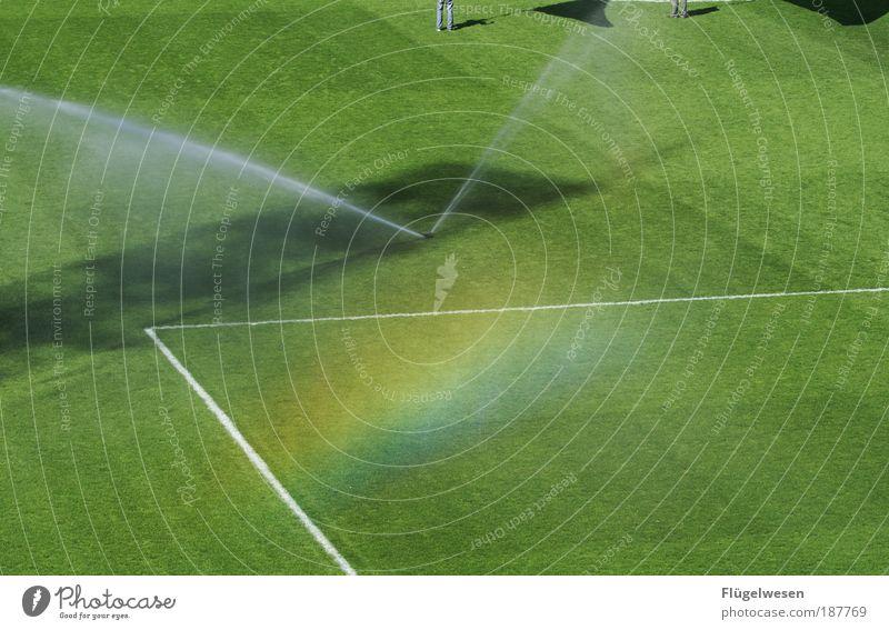 Fahnenschwenker und Sprenkelanlagen Sonne Wiese Gras Sport Lifestyle Feld Freizeit & Hobby genießen Fußball Freundlichkeit Rasen Sportplatz Leidenschaft