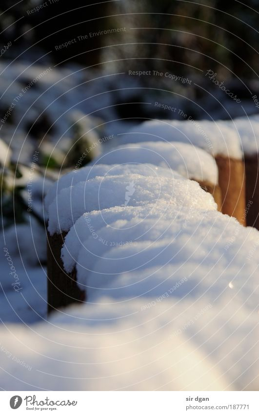 erste schnee schön Winter Schnee Wand Wege & Pfade Mauer Stimmung Park fantastisch