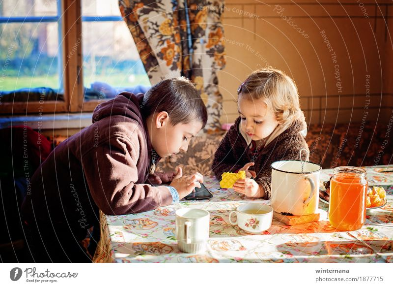 Bruder und Schwester haben einen wunderbaren sonnigen Nachmittag Lebensmittel orange Dessert Liebling Getränk Heißgetränk Tee Becher Freiheit Tisch Raum Mensch