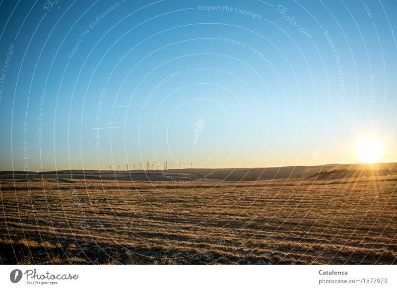Energien Winter wandern Technik & Technologie Windkraftanlage Umwelt Landschaft Himmel Sonne Sonnenlicht Mond Schönes Wetter Gras Wiese Horizont Bewegung