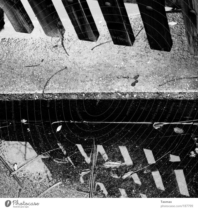 Parallelwelten Garten Tor Reflexion & Spiegelung Gartentor Erde Übergang Wasser Pfütze Regen parallel Fantasygeschichte Spiegelbild Schwarzweißfoto