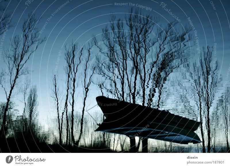 blaue Stunde - 4. Der Traum Wasser Baum Pflanze kalt träumen See Wasserfahrzeug Seeufer skurril Surrealismus falsch Angeln Illusion Ruderboot
