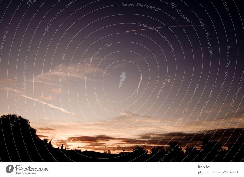 Dämmerung Natur Himmel Baum Pflanze Wolken Farbe kalt Herbst Freiheit Luft Flugzeug Horizont violett Schönes Wetter Nacht