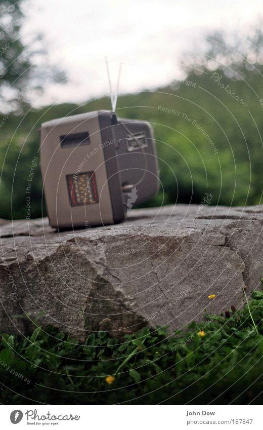 Freiluftkino alt Gras Garten Freiheit Park Landschaft Felsen Technik & Technologie Fernseher offen Sträucher Freizeit & Hobby außergewöhnlich Schönes Wetter
